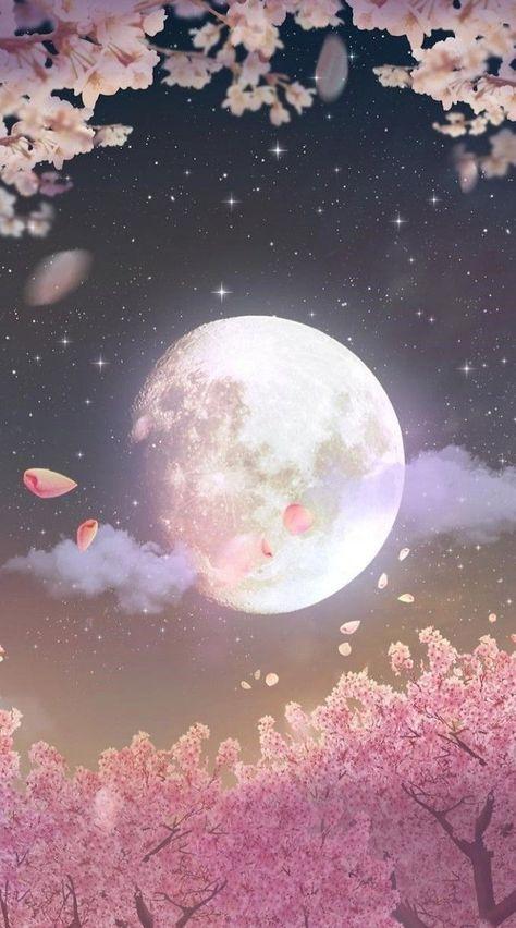 Cherry Blossoms In The Moonlight Art Wallpaper Moon Art Locked Wallpaper Cherry blossom night anime wallpaper