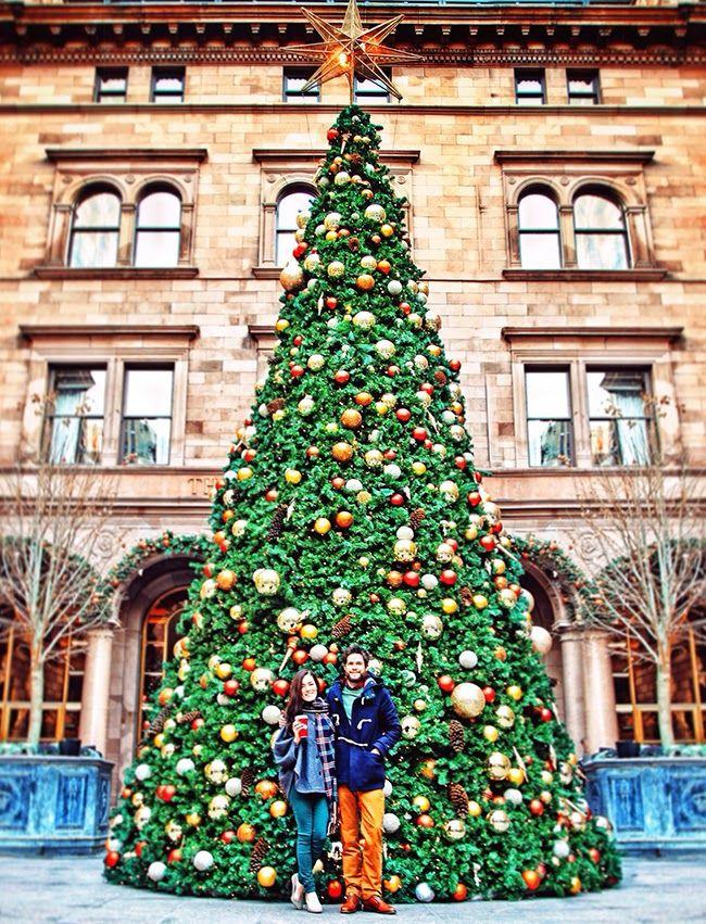 Classy Girls Wear Pearls - Palace hotel Christmas tree ...
