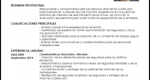 Modelo De Curriculum Vitae Jefe De Obra Modelo De Curriculum Vitae