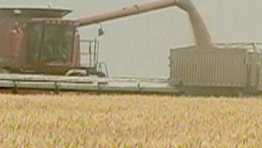 Modern marvels wheat video dailymotion future of tech modern marvels wheat video dailymotion ccuart Gallery