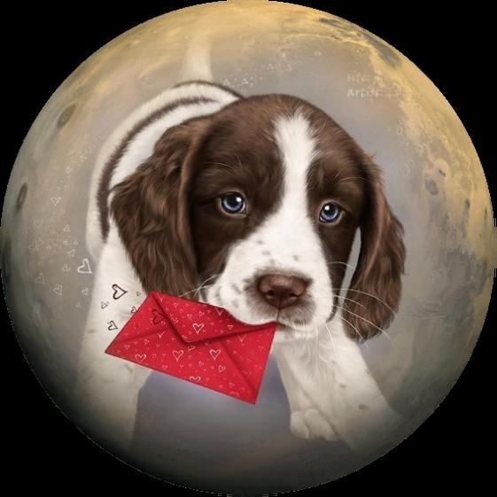круглые картинки собак