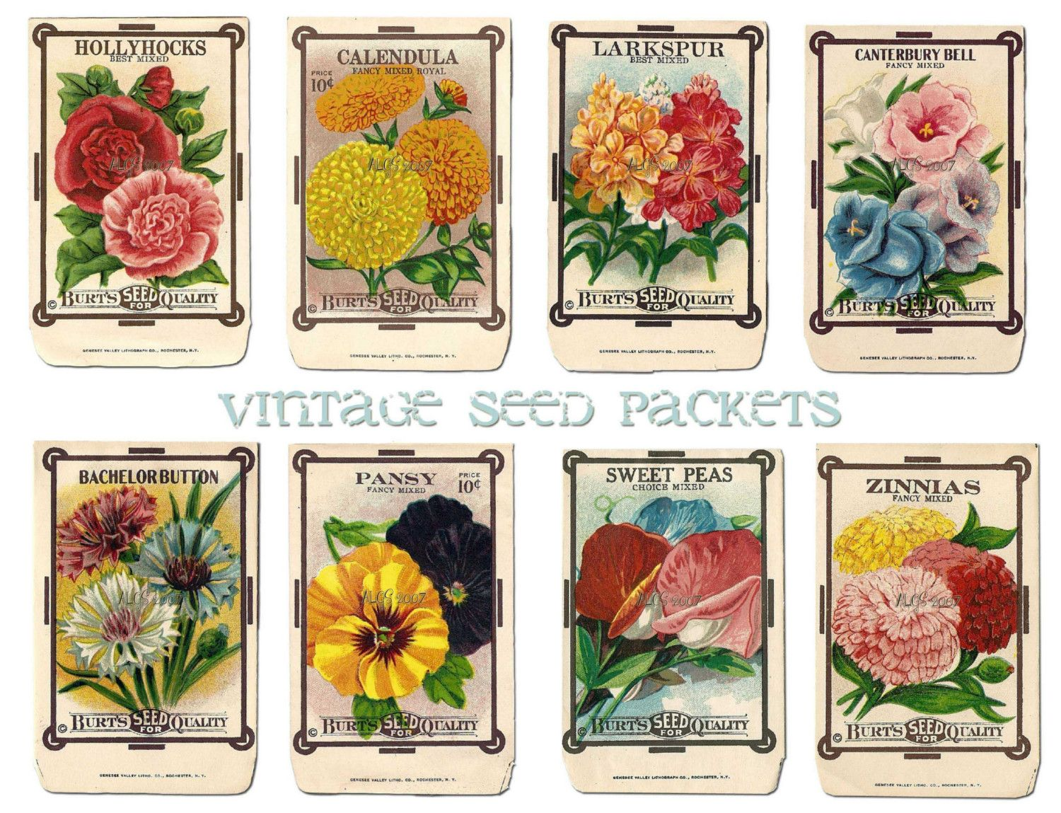Vintage Flower Seed Packet Collage Sheet By