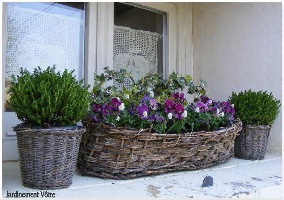 Jardini re et pot es d 39 hiver jardiniere pinterest for Jardiniere exterieur hiver