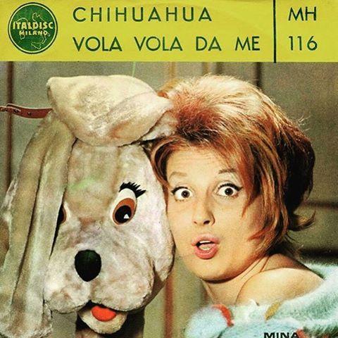 """""""#MINA ✨✨✨✨ #MadeInItaly"""""""