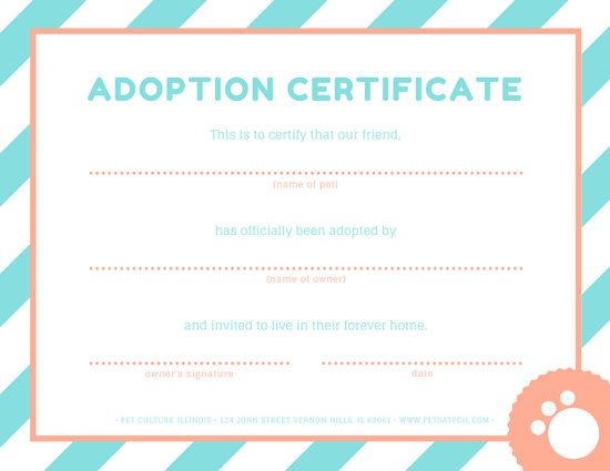 Pink And Blue Pet Adoption Certificate Adoption Certificate Pet