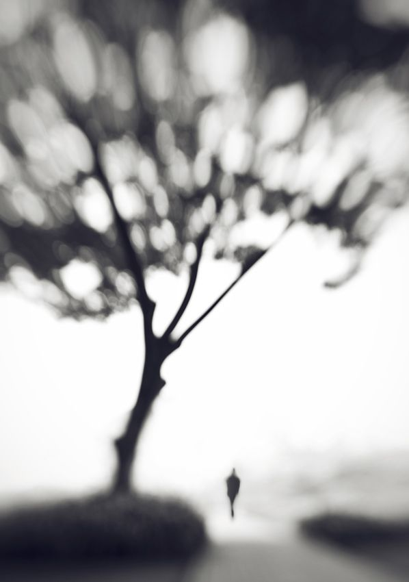 Upon Memory by Hengki Lee #conceptualphotography #photography
