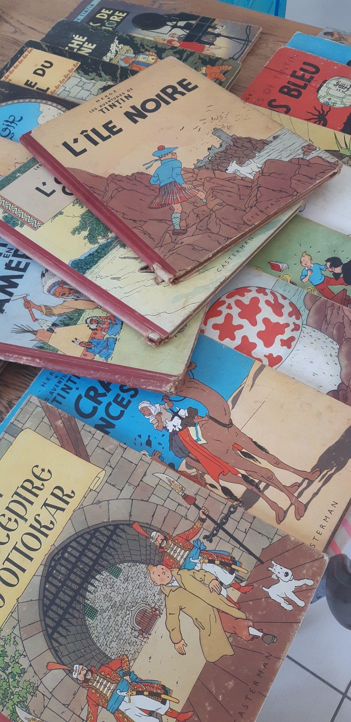 Papier Peint Tintin Et Milou tintin | au fond d un placard | pinterest | tintin