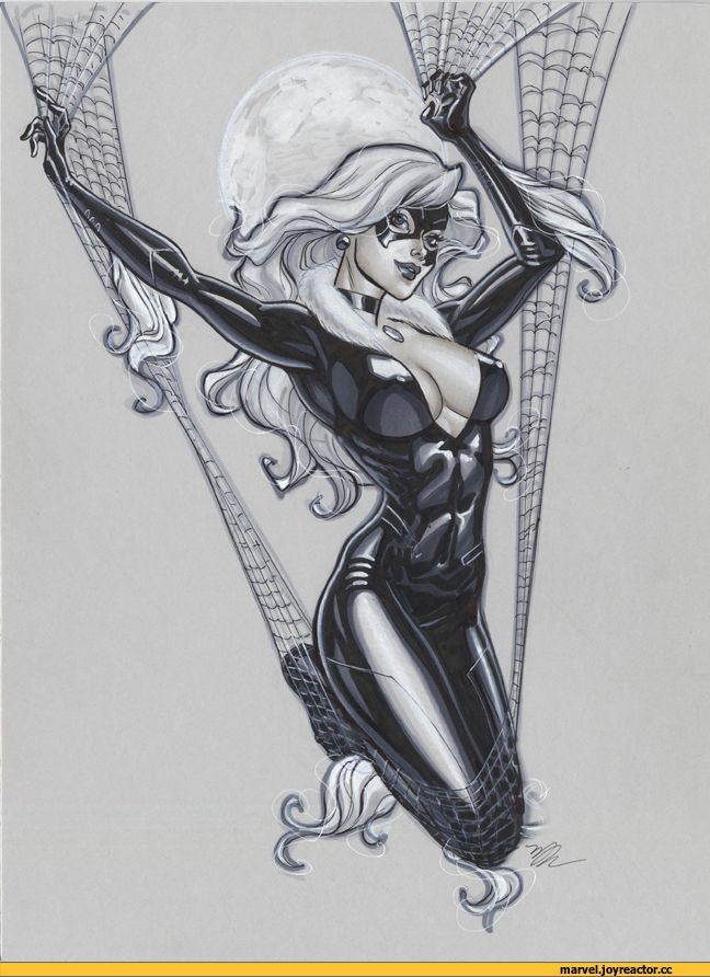 Black-Cat-Felicia