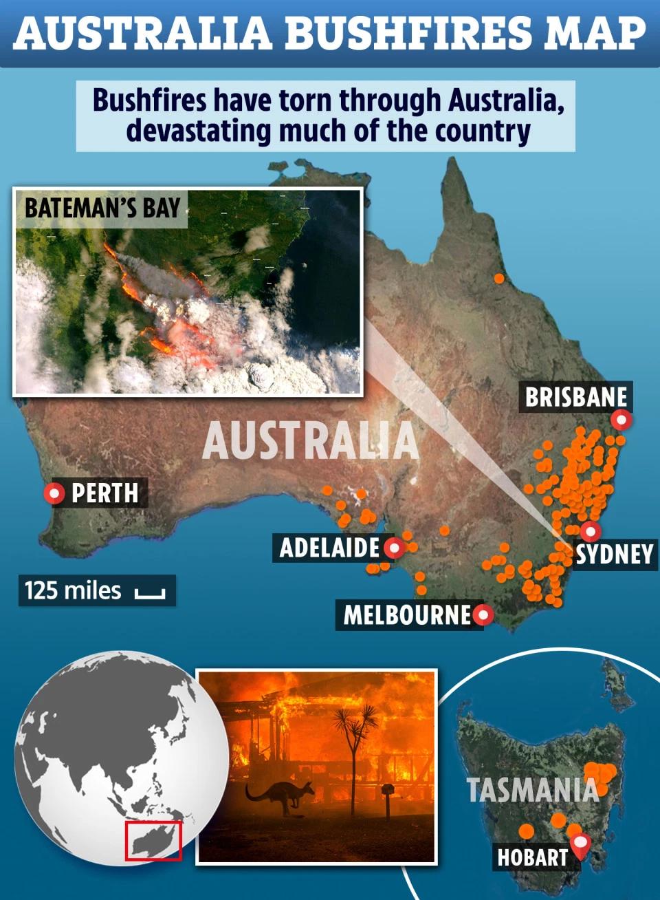 Pin on 澳洲山火
