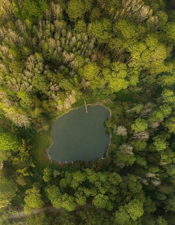 Parque Nacional Las Victorias, Cobán, Alta Verapaz, #Guatemala Foto  Vuelotenango. | América latina, Outdoor, Latina