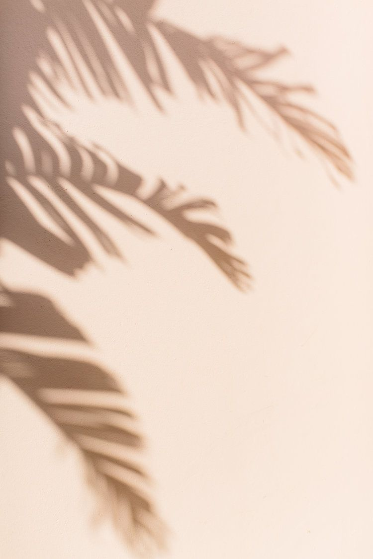 Palm Beach Travel Guide — Abby Capalbo