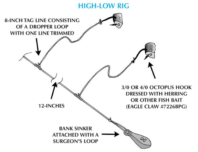 Sea bass high low rig fish time pinterest sea bass for Best bottom fishing rigs