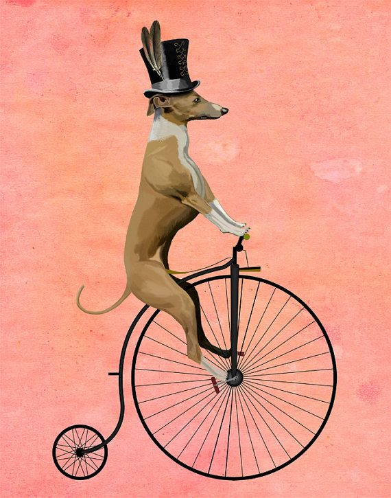 Greyhound Print Black Penny Farthing Bicycle Poster Dog