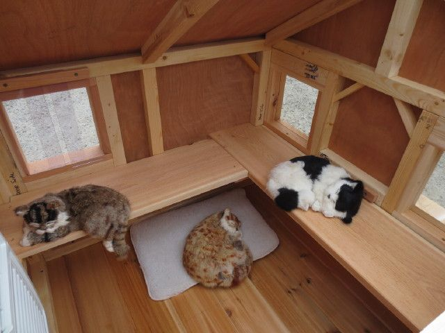 Super Cat Cottage 36 X 37 Interior Ledges Escape Hatch Outdoor Cat House Feral Cat House Heated Outdoor Cat House