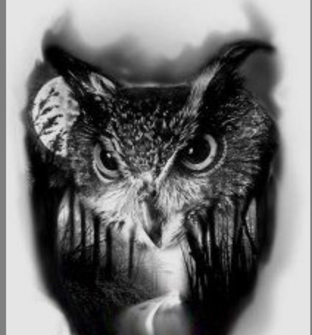 Tattoo ideas | Owl tattoo drawings, Realistic owl tattoo ...
