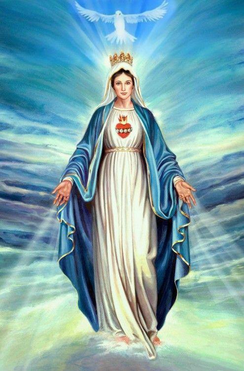 Día De La Inmaculada Concepción De La Virgen María Inmaculada Concepción De La Virgen María Inmaculada Concepcion De Maria Inmaculada