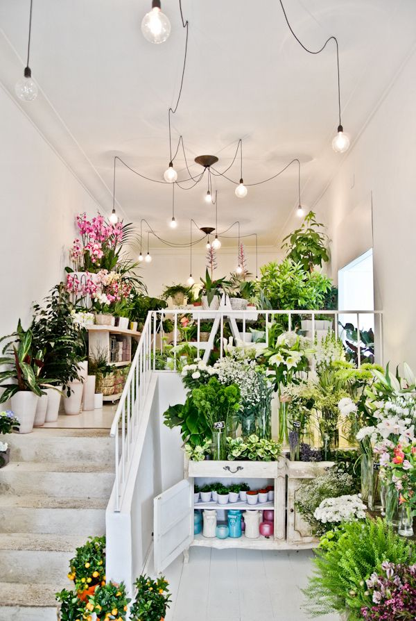 Pinterest se im genes frases y pensamientos for Flower shop design layouts