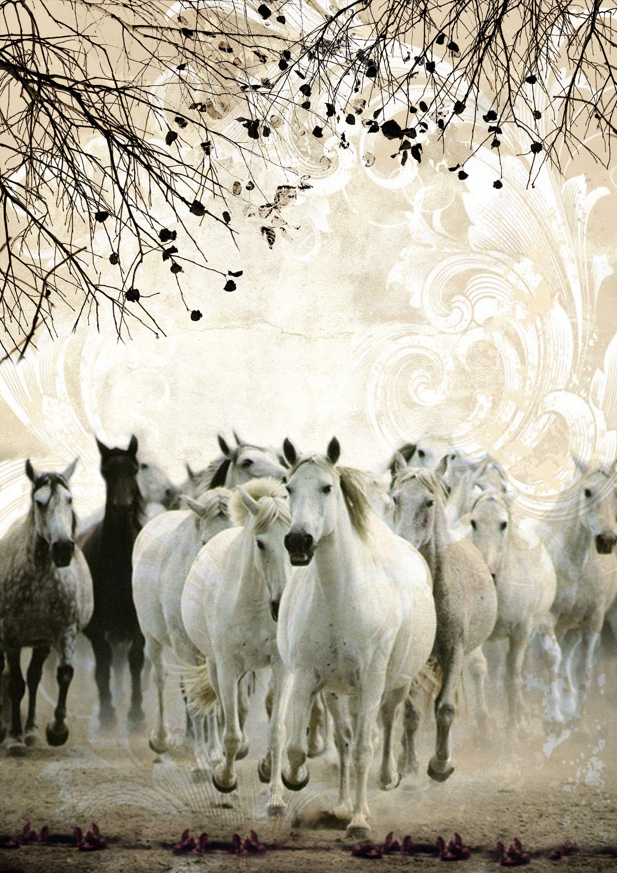 Fotomontaje caballos vintage