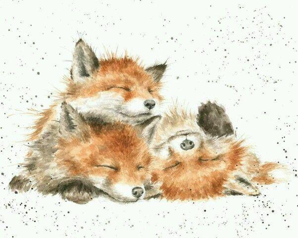 Фотография Акварельная живопись En 2019 Рисунок лисы