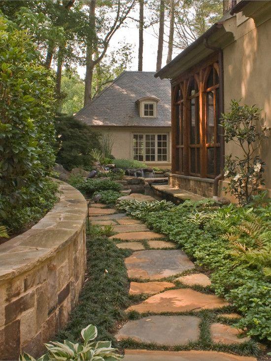 backyard oasis - traditional