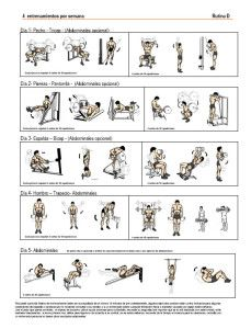 best workout routine to gain muscle mass  workoutwalls