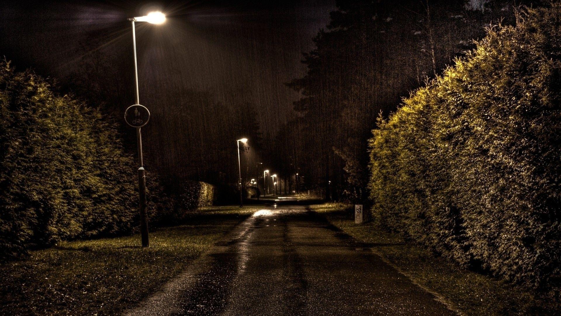 Синоптики попереджають жителів Житомирської області про пориви вітру ташквали