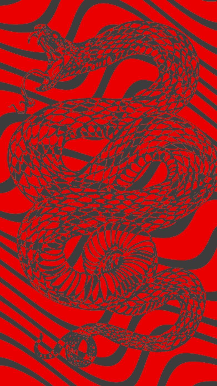 Red Snake Wallpaper Snake Wallpaper Trippy Wallpaper Snake Painting