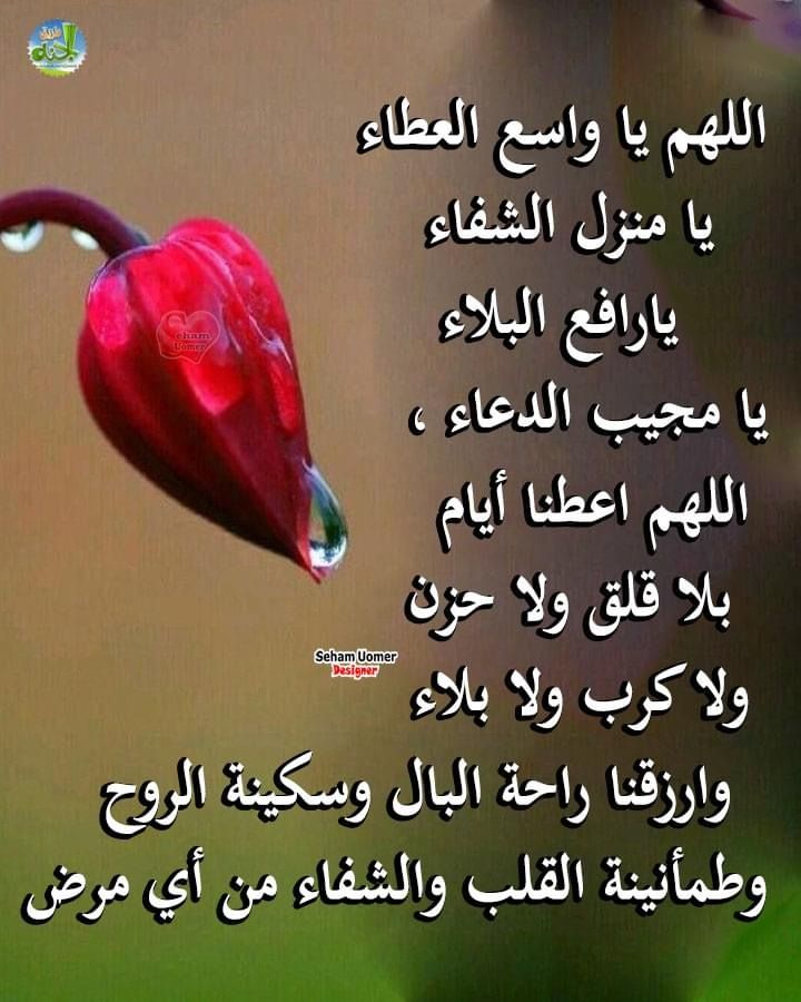 Pin By Ahmedlamine Benferhat On دعاء Islamic Inspirational Quotes Duaa Islam Muslim Quotes