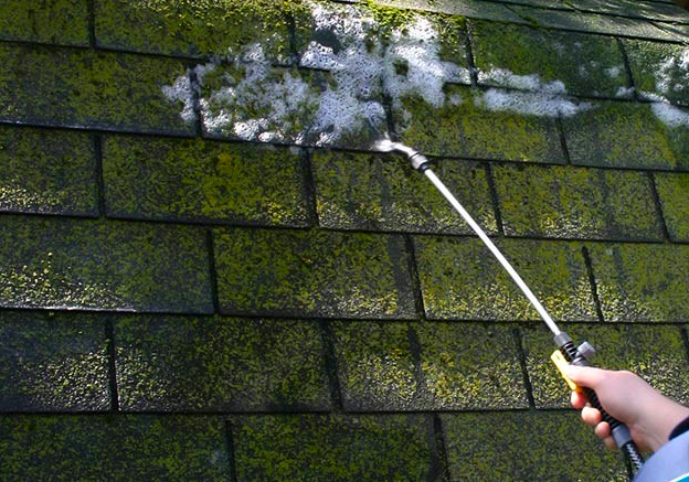 Rid Your Roof Of Moss Hunker Moss Removal Roof Cleaning Cleaning Hacks