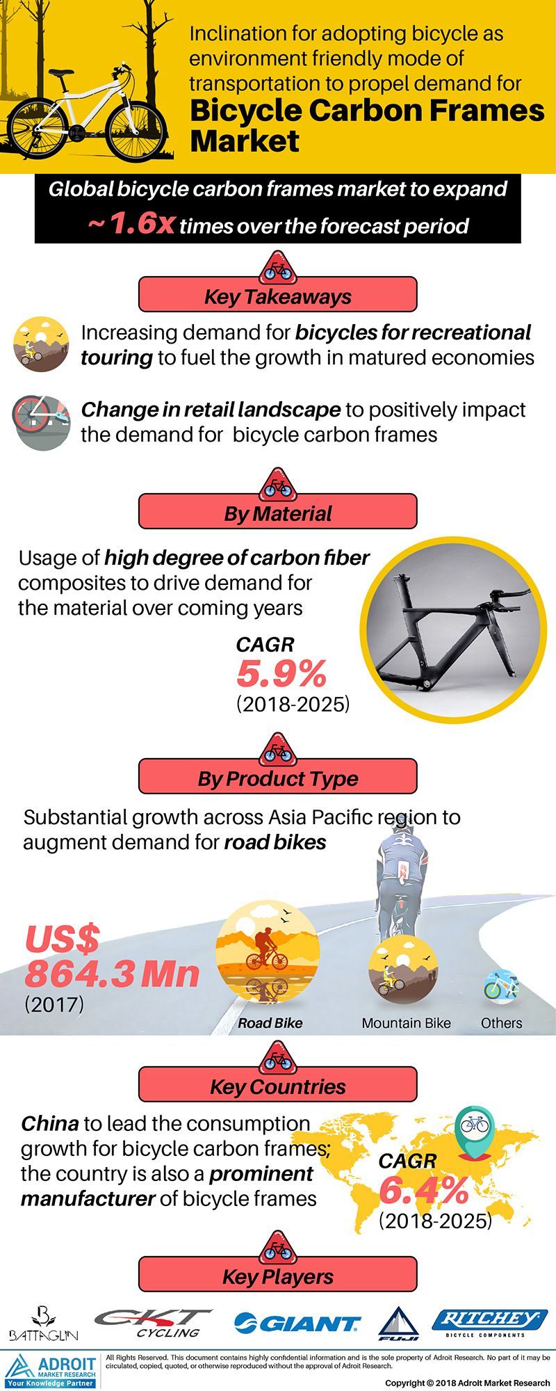 Global Bicycle Carbon Frames Market Size 2017 By Material