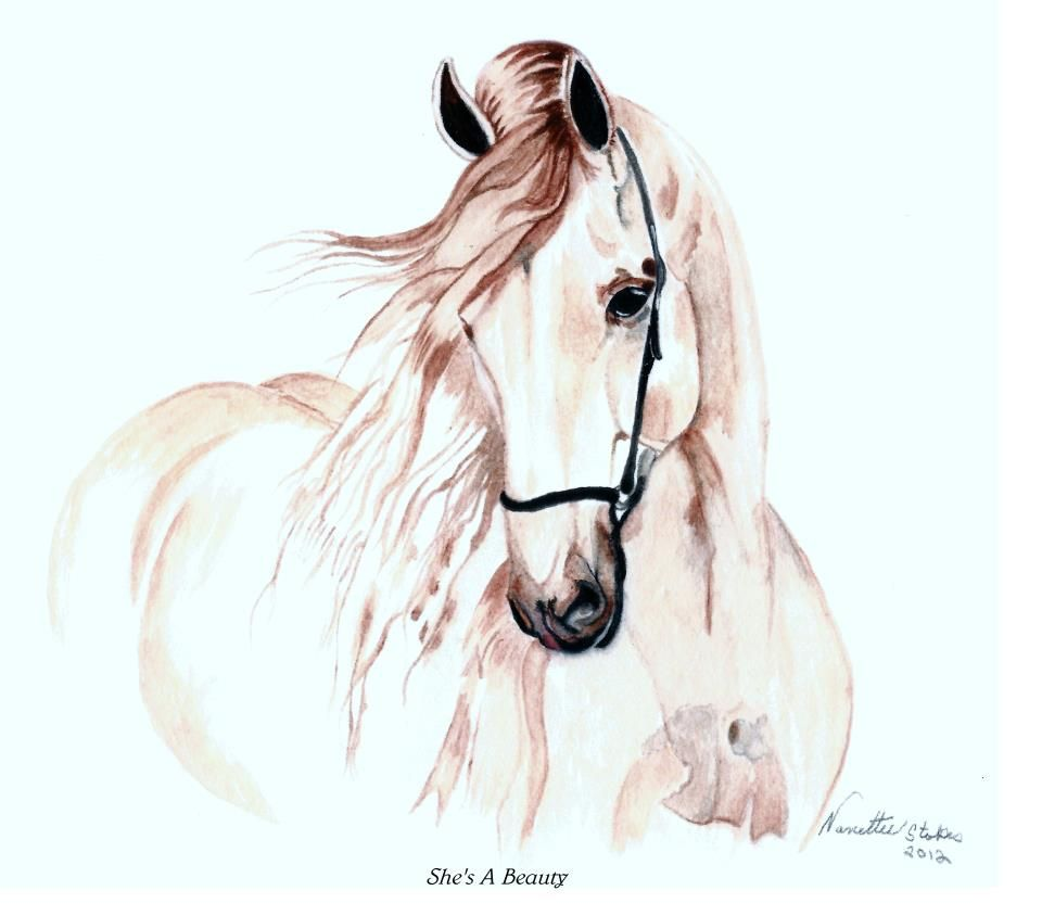 My first watercolor animal my paintings pinterest for My first watercolor painting