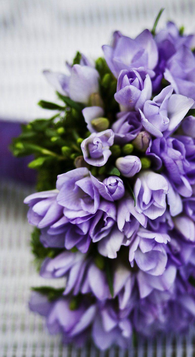 Marriage flower purple flowers pretty flowers pinterest