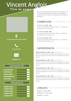 CV Vierge, prêt à remplir   Exempledecv.| Design | Pinterest
