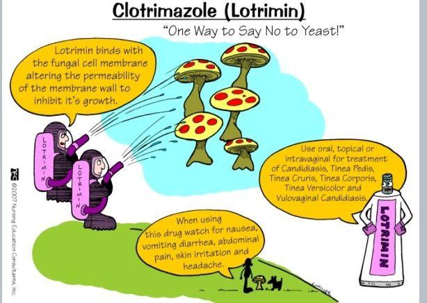 Lotrimin mnemonic