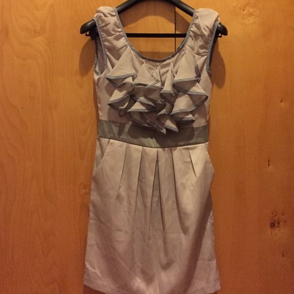 New ruffle dress size small This is a brand new ruffle dress with tag. Has pockets and side zip! Modalistas Dresses
