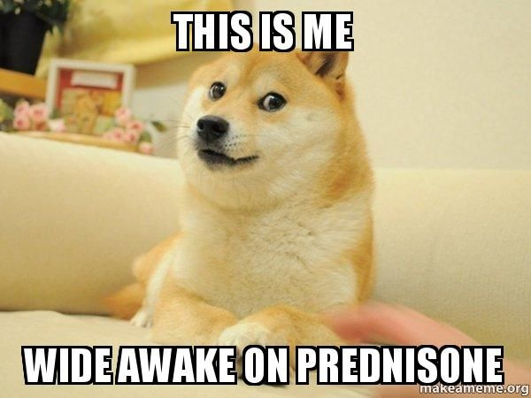 Order usa prednisone online