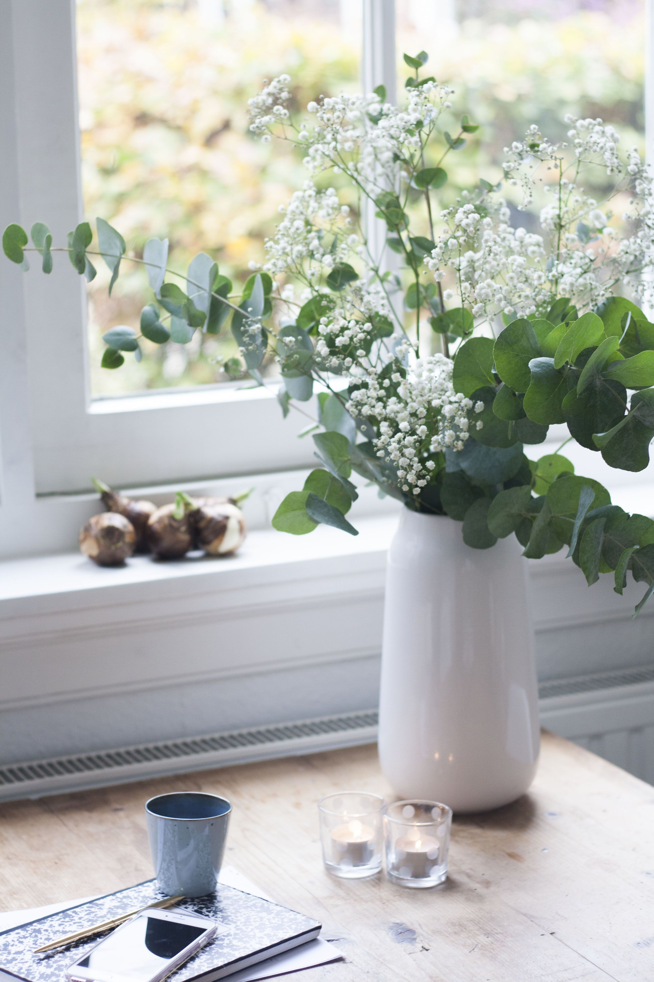 Decorative eucalyptus at home, did anyone grow or your friends What is the care and share the photo, if any Thank you