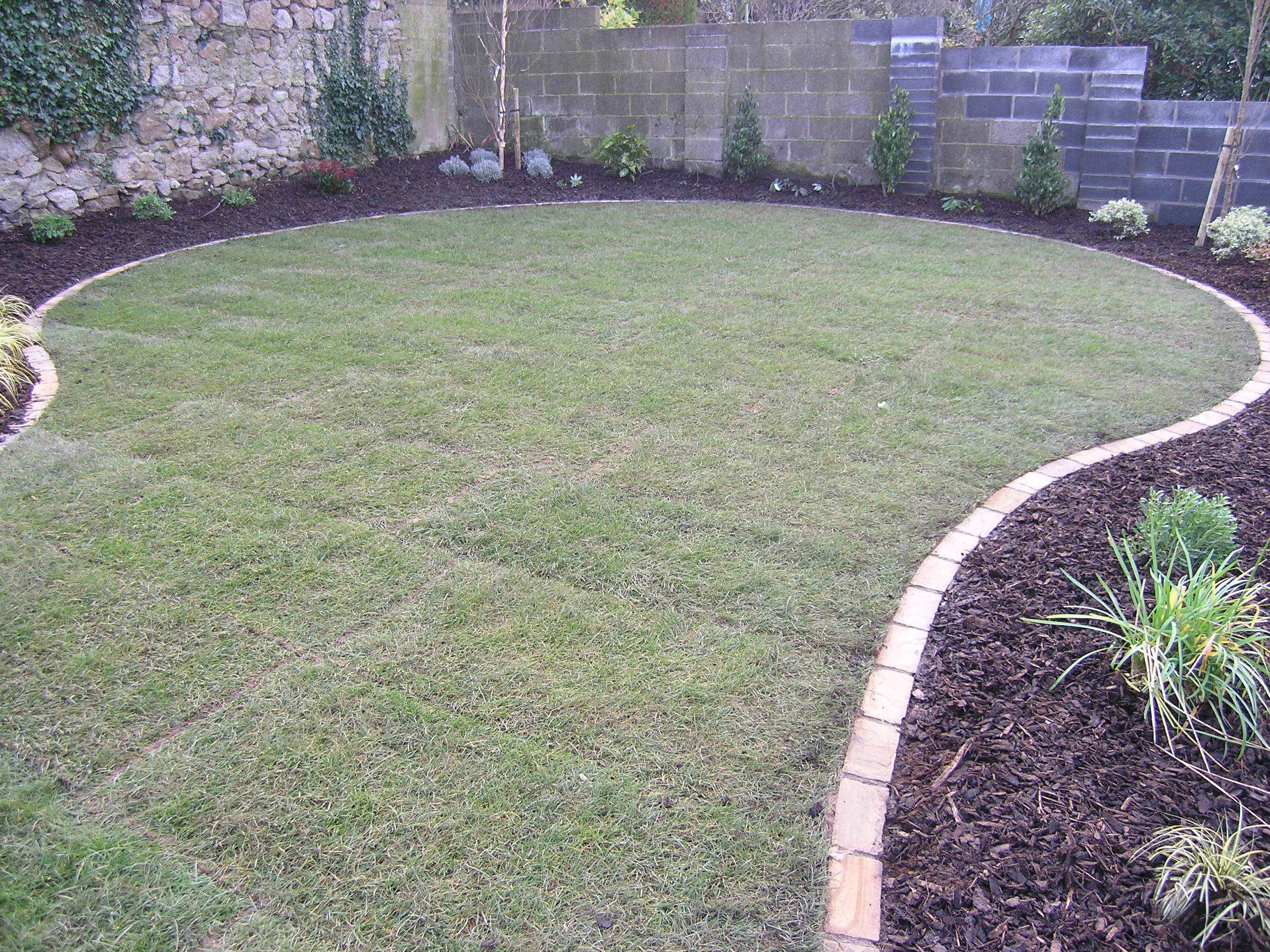 Tidy lawn edges no weed eating and can mow over the for Grasses for garden borders