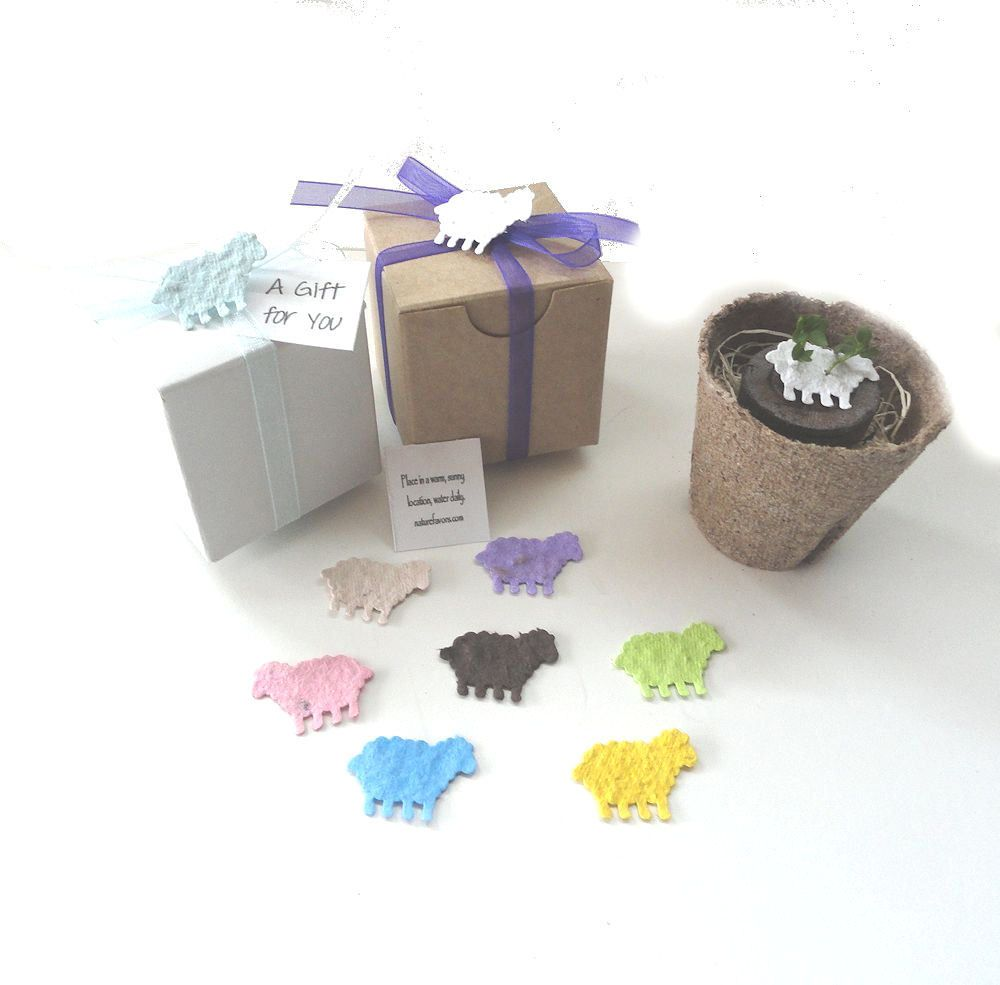 flower seed baby shower favors - Google Search | Baby | Pinterest ...