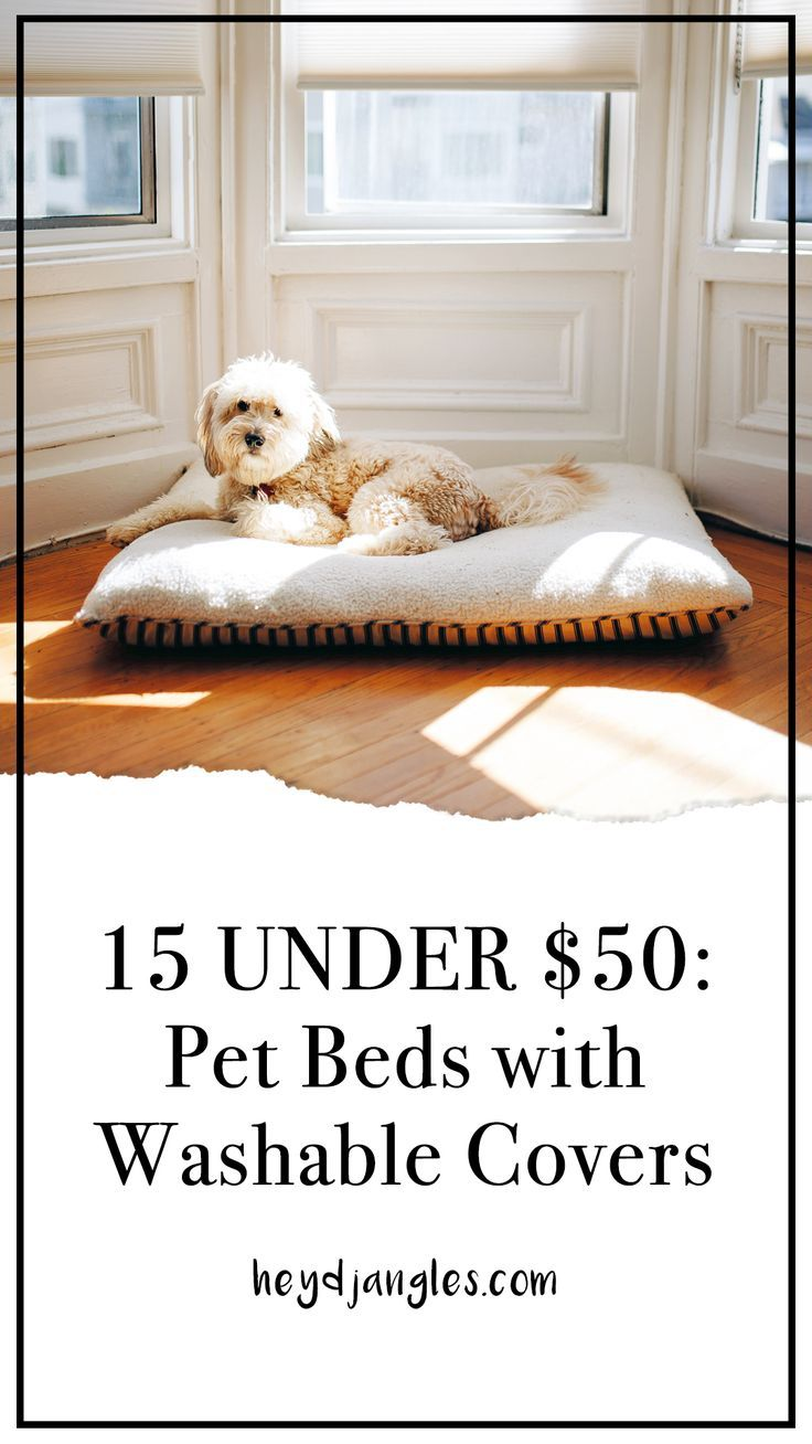 15 UNDER 50 Pet Beds With Washable Covers Pet beds