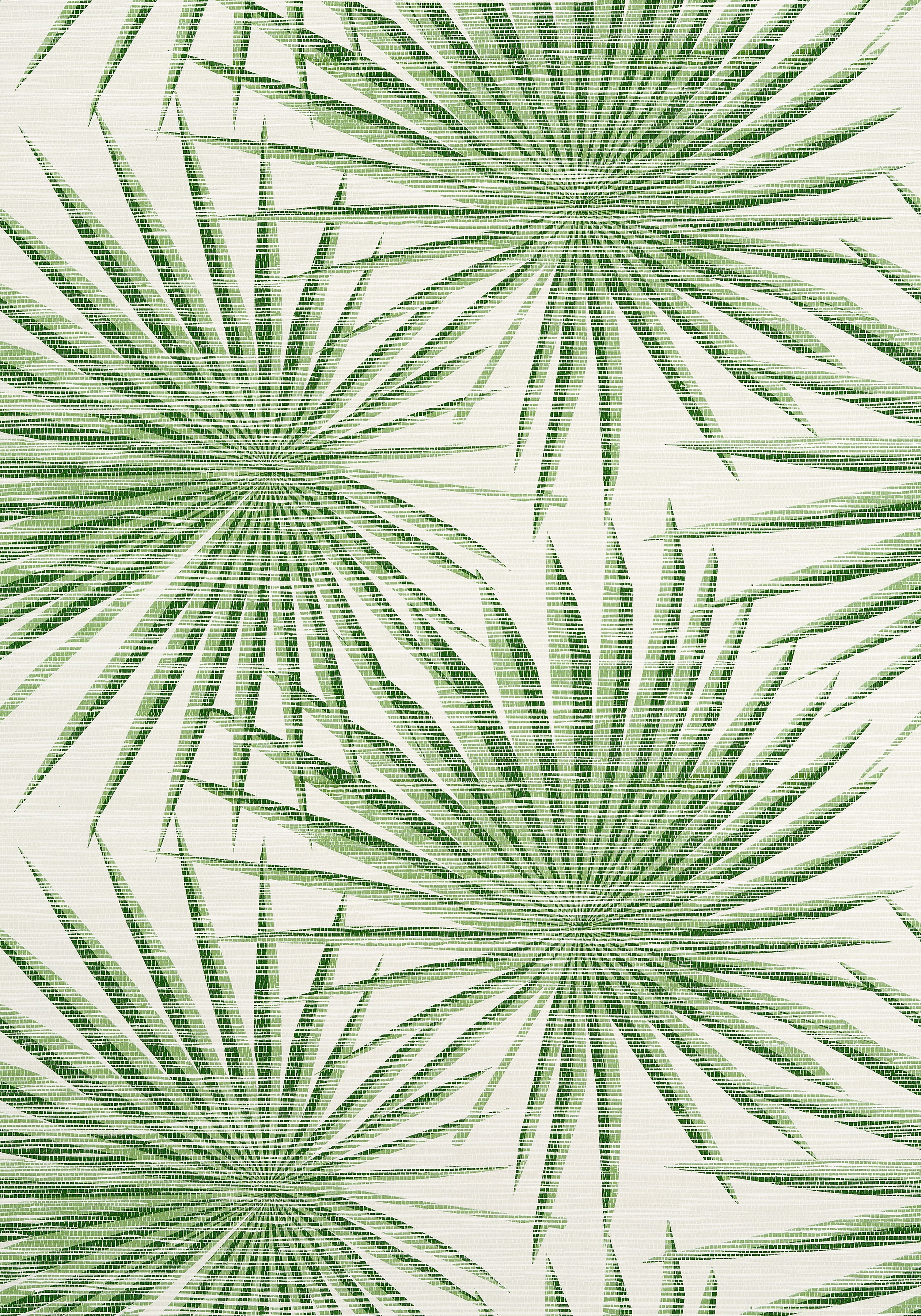Palm Frond Green And White T10142 Collection Tropics