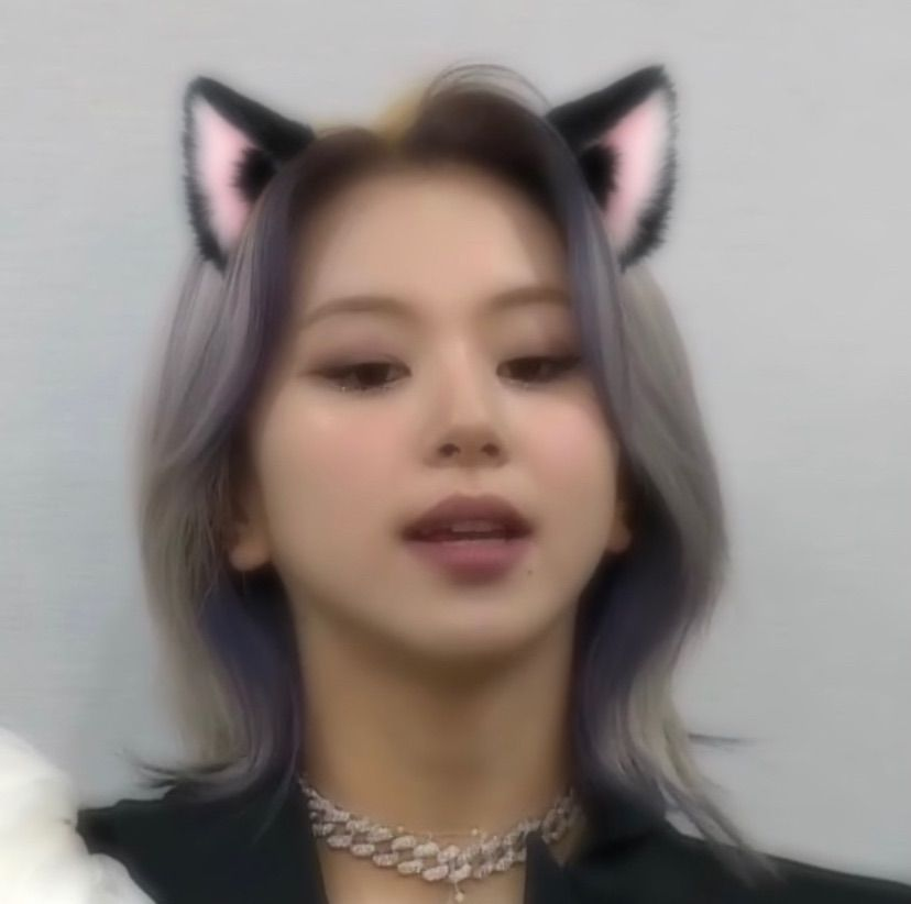 chaeyoung cat