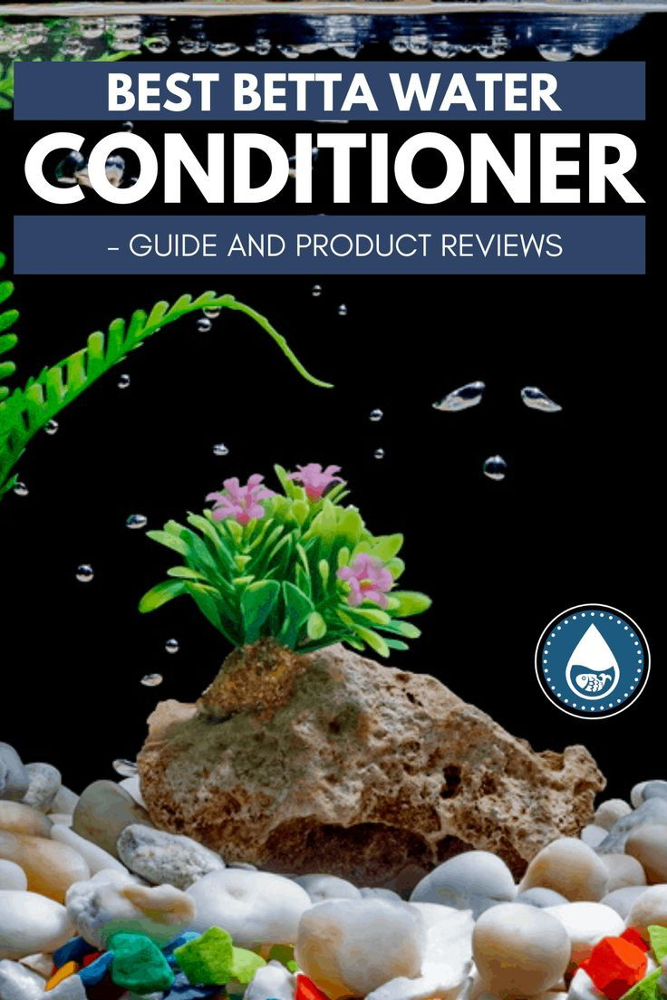 how to remove chlorine from water for aquarium