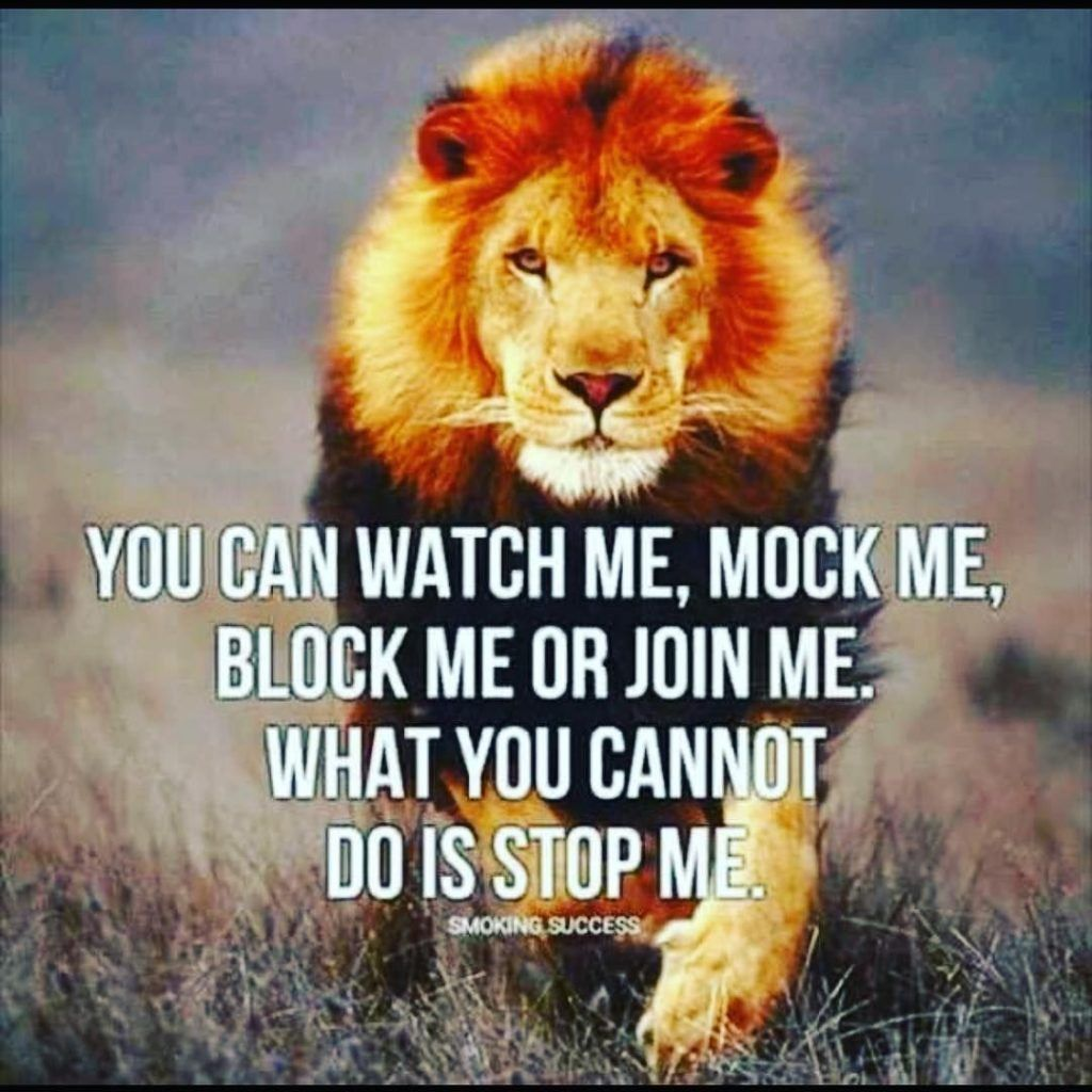 You Can Watch Me Mock Me Block Me Or Join Me What You Cannot Do Is Stop Me Quotes Sayings Inspira Lion Quotes Inspiring Quotes About Life Warrior Quotes