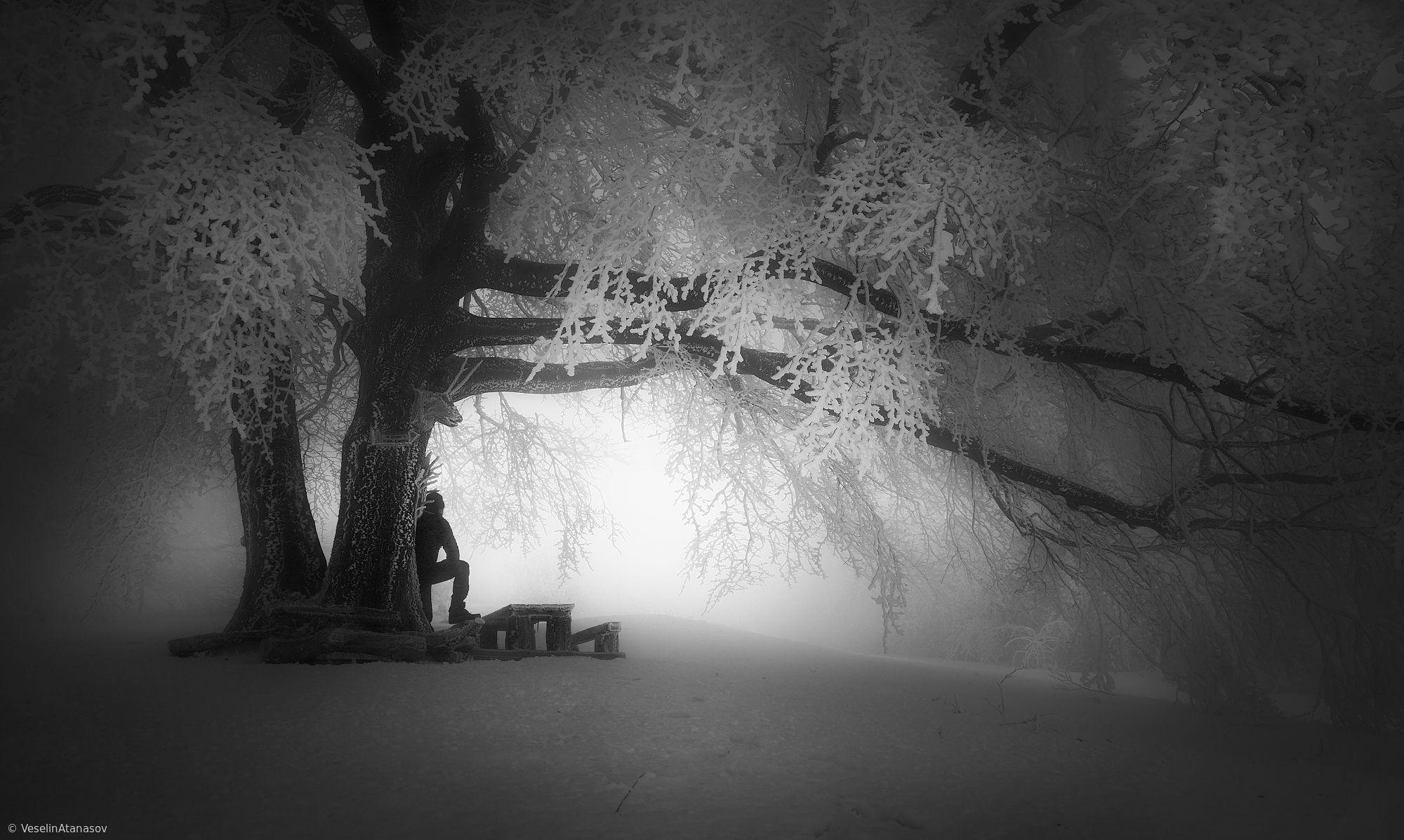 reflection (by Veselin Atanasov) | Photo, Photography, Scenery