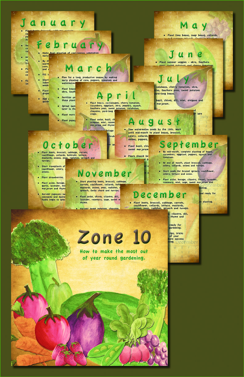 a 12 month veggie gardeners toplant list for zone 10