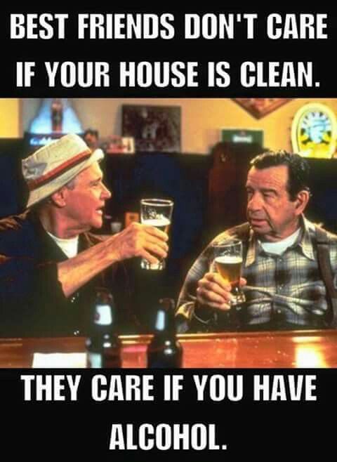 Friends Don T Care If Your House Is Clean They Just Care If You Got Alcohol Humor Funny Quotes Funny Pictures