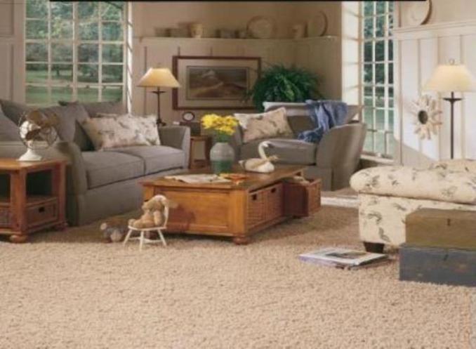 living room carpet ideas  brown carpet living room