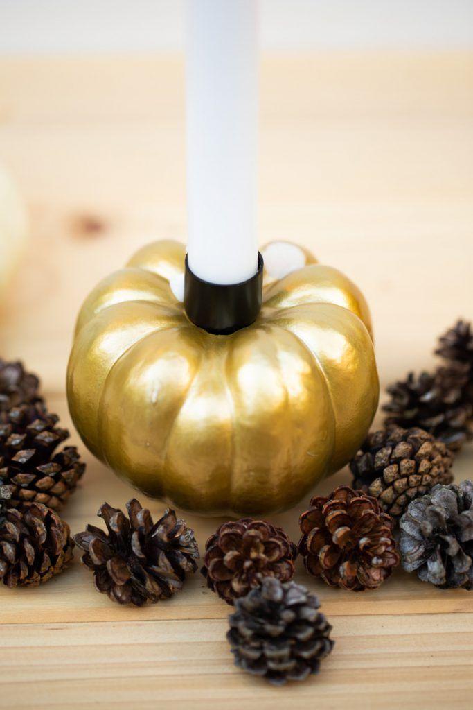 DIY Kürbis Kerzen selber machen - Herbstliche Tischdeko basteln #herbstlichetischdeko DIY Kürbis Kerzen selber machen - Herbstliche Tischdeko basteln #herbstlichetischdeko DIY Kürbis Kerzen selber machen - Herbstliche Tischdeko basteln #herbstlichetischdeko DIY Kürbis Kerzen selber machen - Herbstliche Tischdeko basteln #herbstlichetischdeko DIY Kürbis Kerzen selber machen - Herbstliche Tischdeko basteln #herbstlichetischdeko DIY Kürbis Kerzen selber machen - Herbstliche Tischdeko basteln #herbstlichetischdeko