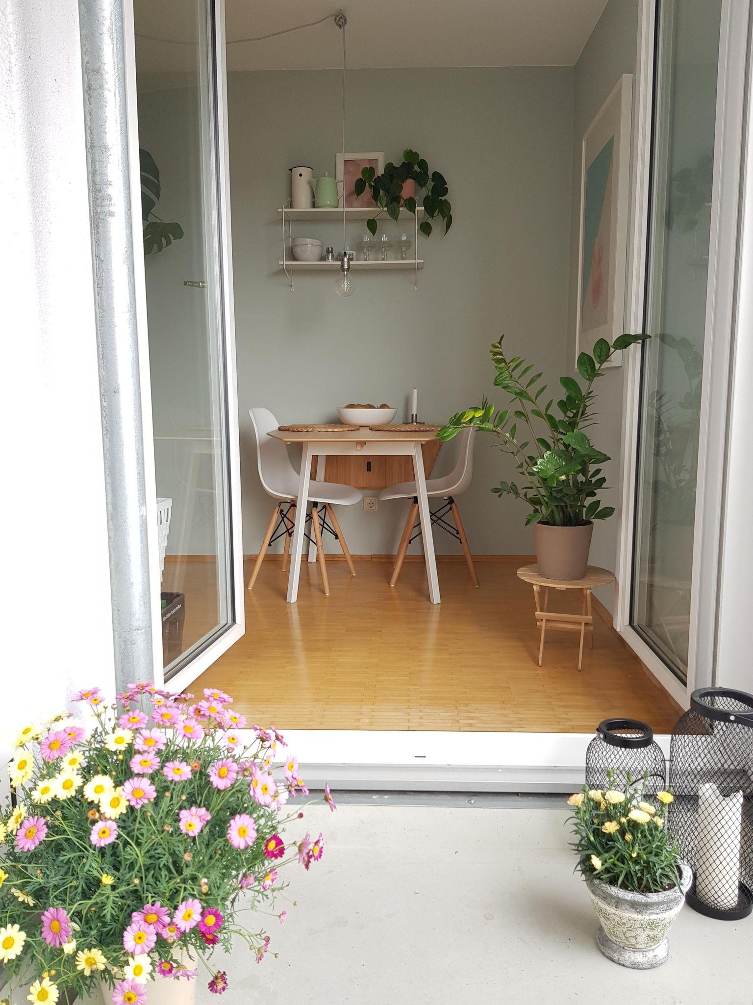 Der Blick Vom Frisch Bepflanzten Balkon In Die Kuche Hofgarten Balkon Balkonien